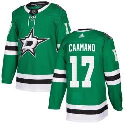 Nick Caamano Dallas Stars Men's Adidas Authentic Green ized Home Jersey